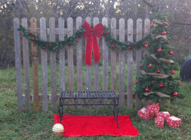 78+ Ideas About Outdoor Christmas Photography On Pinterest
