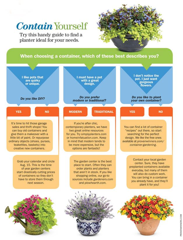 Want To Try Your Hand At Small Space Gardening? Try This Handy Guide To Find
