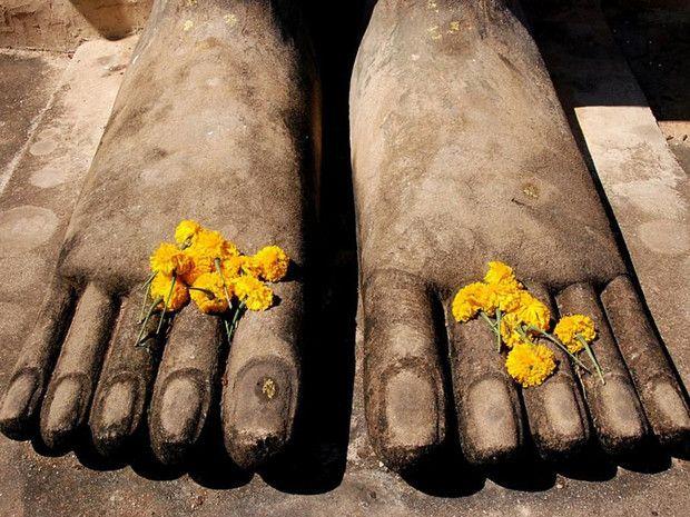 Statues énigmatiques à Sukhothaï en Thaïlande, vignobles rougeoyants de Saint-Pourçain-sur-Sioule ou tour de grande roue à Londres... Comme chaque lundi, voici les plus belles photos postées sur GEO.fr