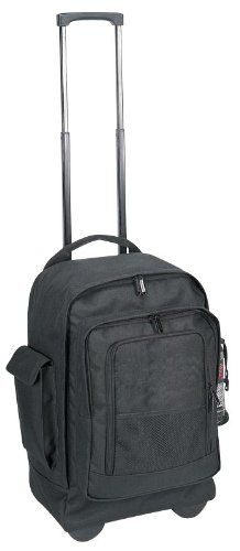 Rolling Backpacks ROCK. I love mine. Maybe I'll take it shopping so I won't have to carry a bunch of plastic bags.