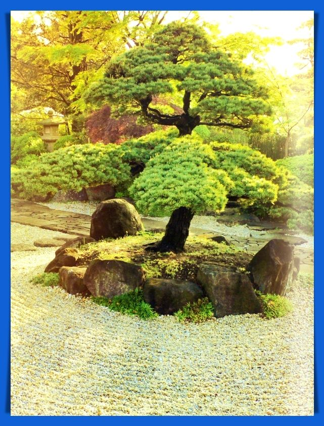 13 Amazingly Wonderful Backyard Japanese Style Garden Tips