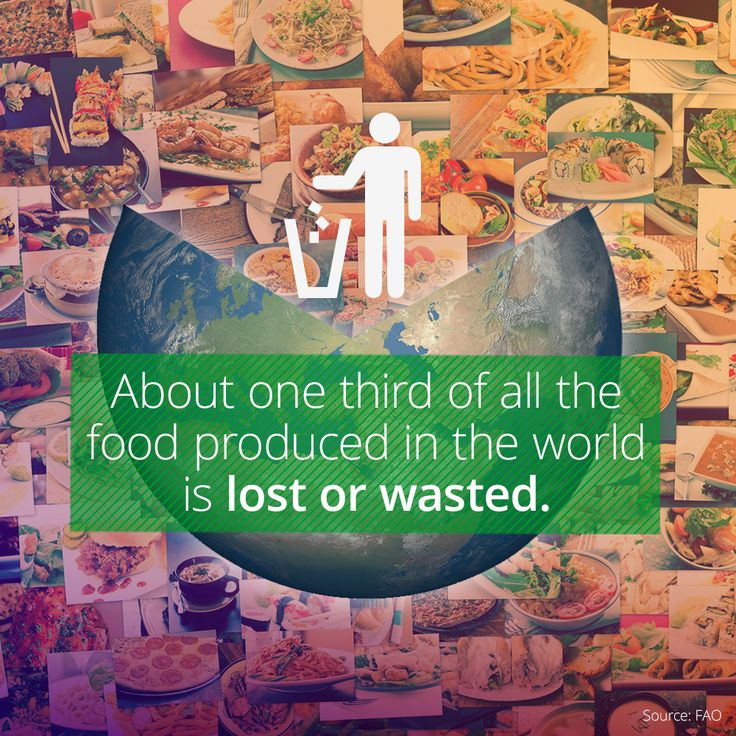 The World Wastes Millions Of Tons Of Food