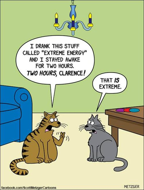 Hilarious Animal Cartoons By Scott Metzger Pleated Jeans Funny