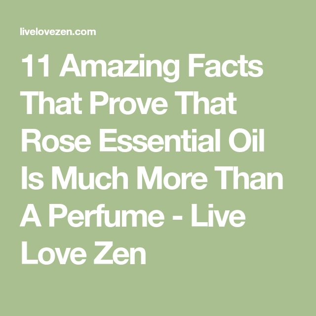 11 Amazing Facts That Prove That Rose Essential Oil Is Much More Than A Perfume - Live Love Zen