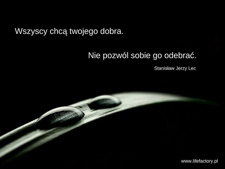 #dobro, #asertywność, #lifefactory