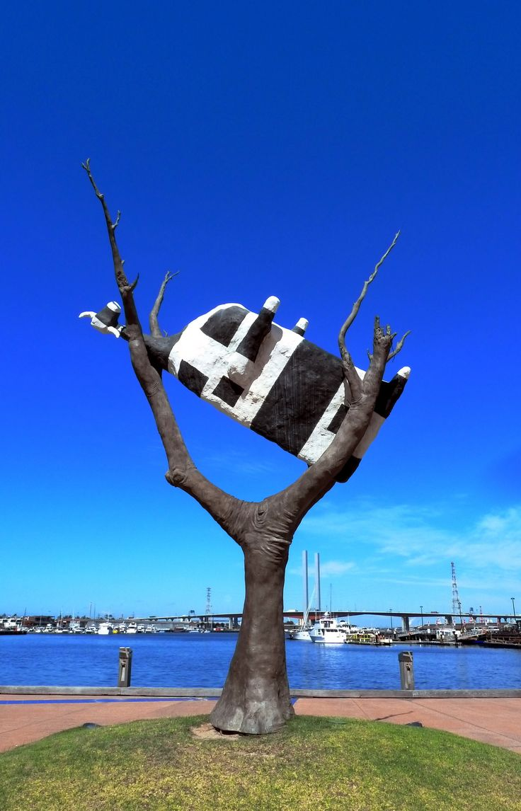Cow in tree Melbourne Docklands - public art  - You never know what you will find in Melbourne....