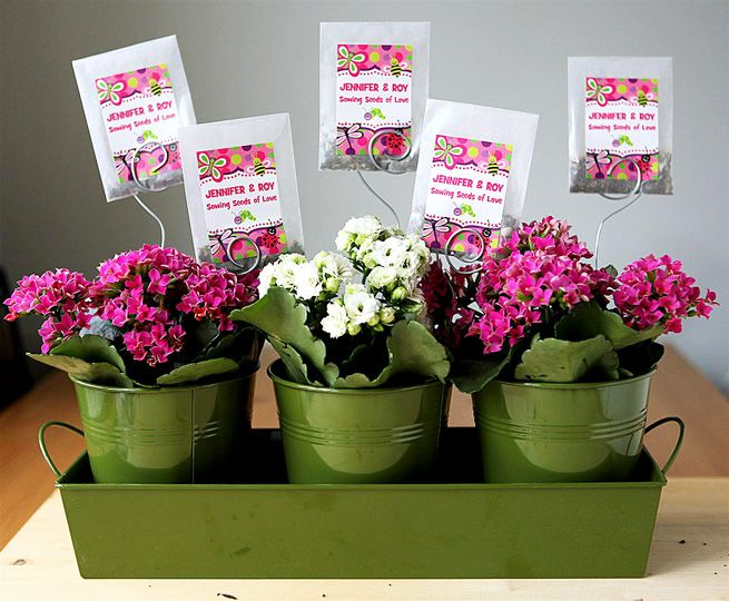 Flowers For Bridal Shower Favors : Best images about seed gifts favor thank you on