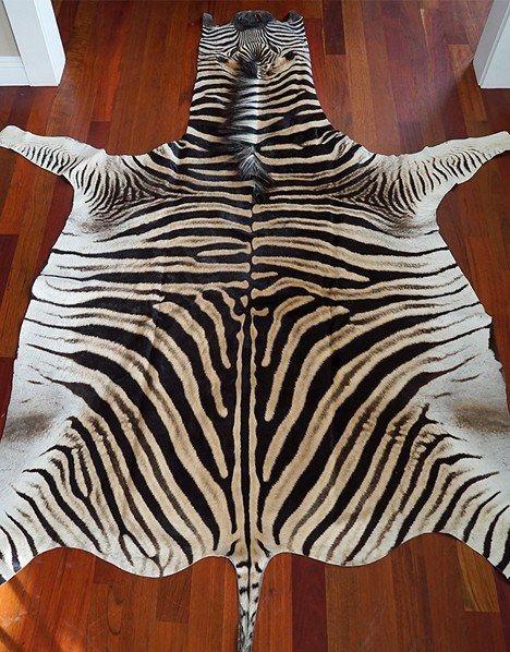No Felt Zebra Skin Rug Grade A