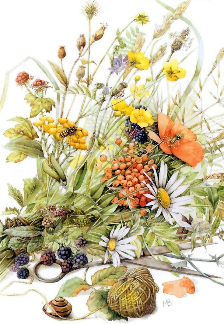 799 best images about marjolein bastin on pinterest nests artworks and dutch - Bouquet de fleurs des champs ...