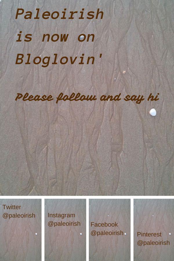 Paleoirish on bloglovin
