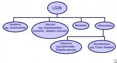 Types of lower gastrointestinal bleeding (LGIB).