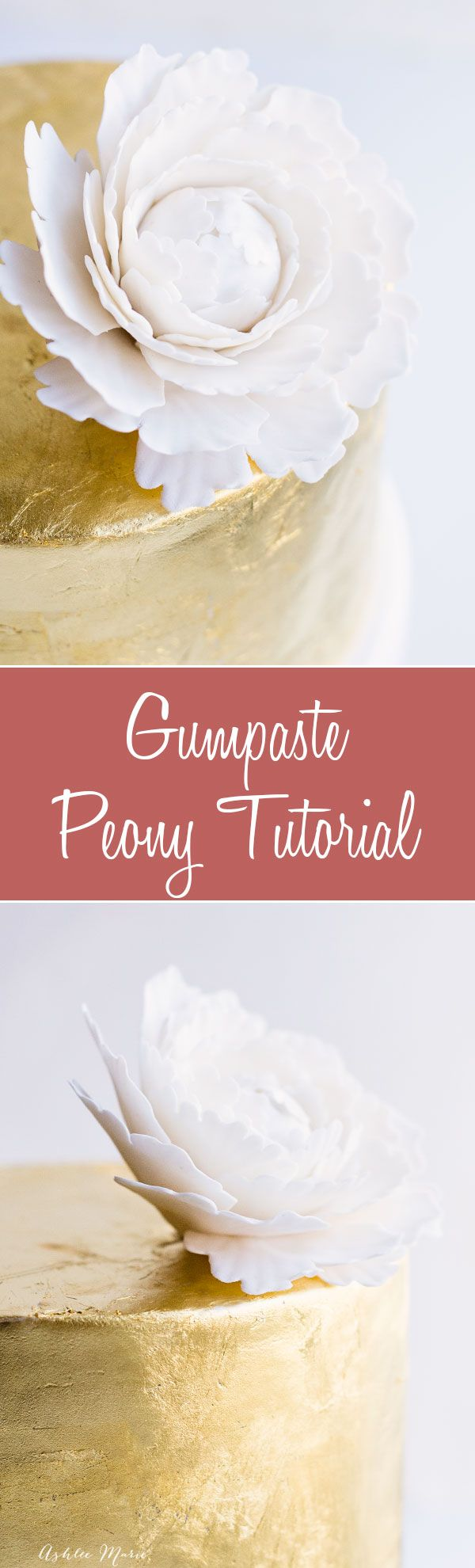 a video tutorial for making your own gumpaste peony's