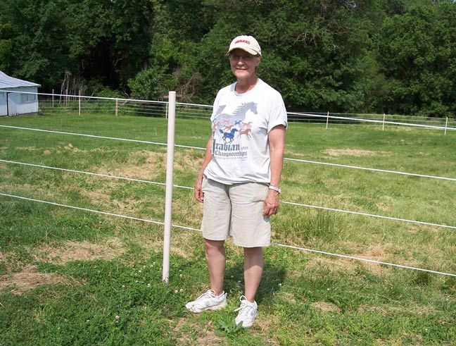 "Horse fence even I could put up myself!!!!  Use in line posts at least 72"" long to put them into ground at least 18-24 inches.  Space them 30-40 feet apart."