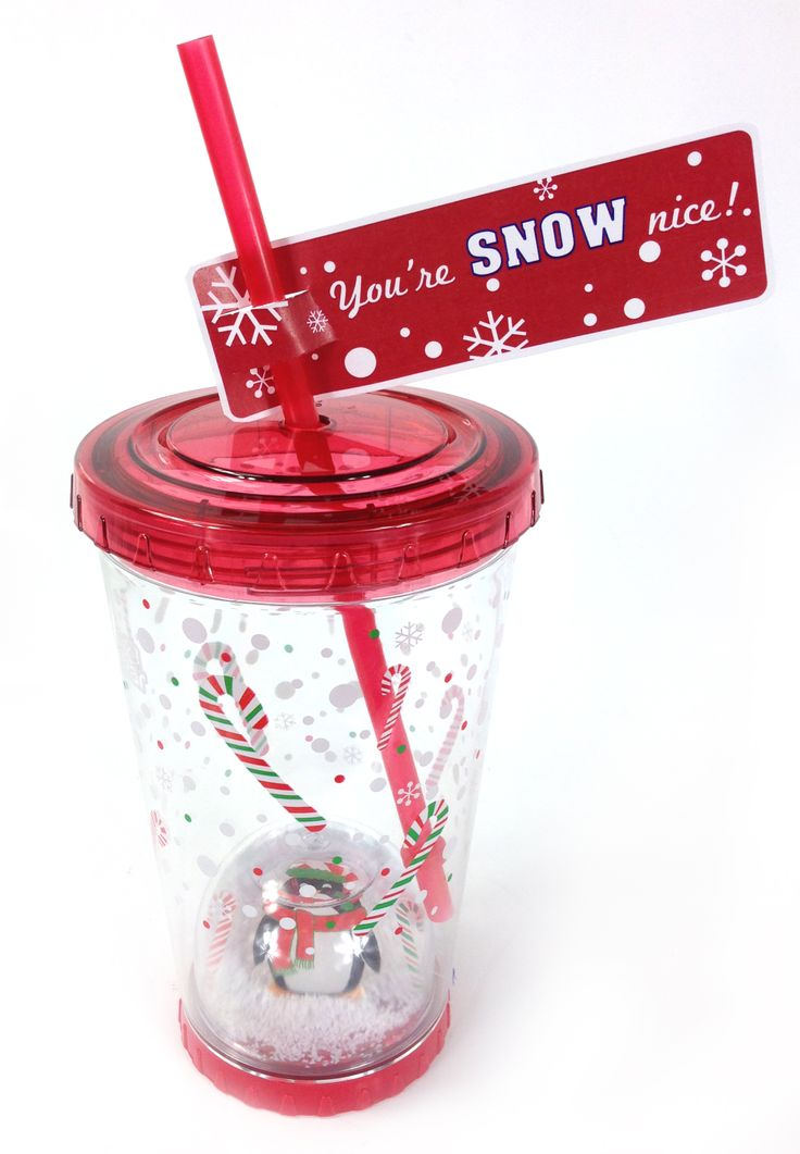 You're Snow Nice! That's what they will be saying when they open their holiday snowglobe tumbler. #CoolGear