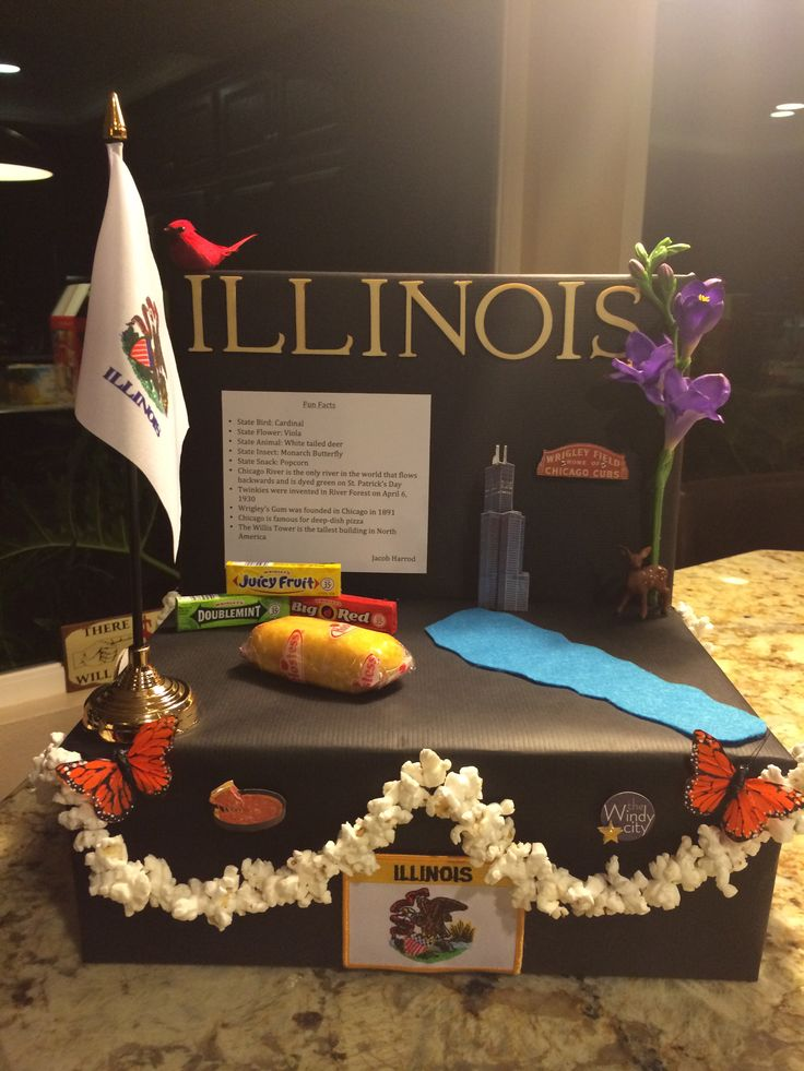 Illinois state float school project