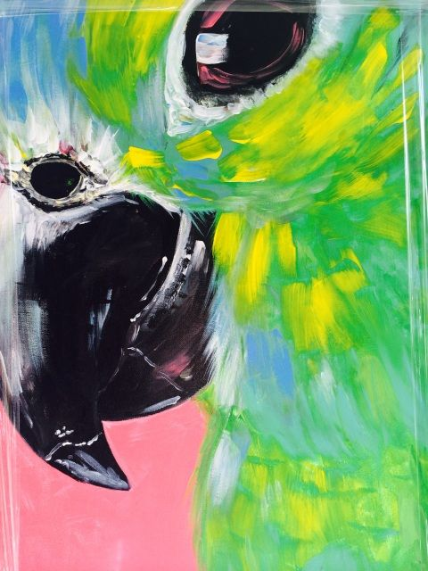 Original Acrylic parrot Painting - 1 off large canvas 400mm x 600mm