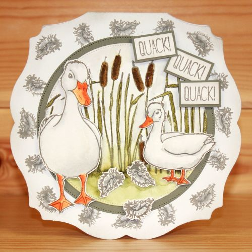 CS159D 'Quackers' Clear set contains 15 stamps designed by the very talented Sharon Bennett. Overall size of set - 100mm x 260mm approx. All our clear stamps are made with photopolymer resin. The Monthly Special includes a free A4 Project sheet by Becki Mayes. Card by Heidi Green