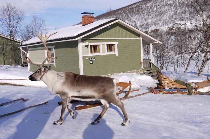 Holiday Village Valle, Utsjoki: See 5 traveler reviews, 36 candid photos, and great deals for Holiday Village Valle, ranked #1 of 5 specialty lodging in Utsjoki and rated 5 of 5 at TripAdvisor.