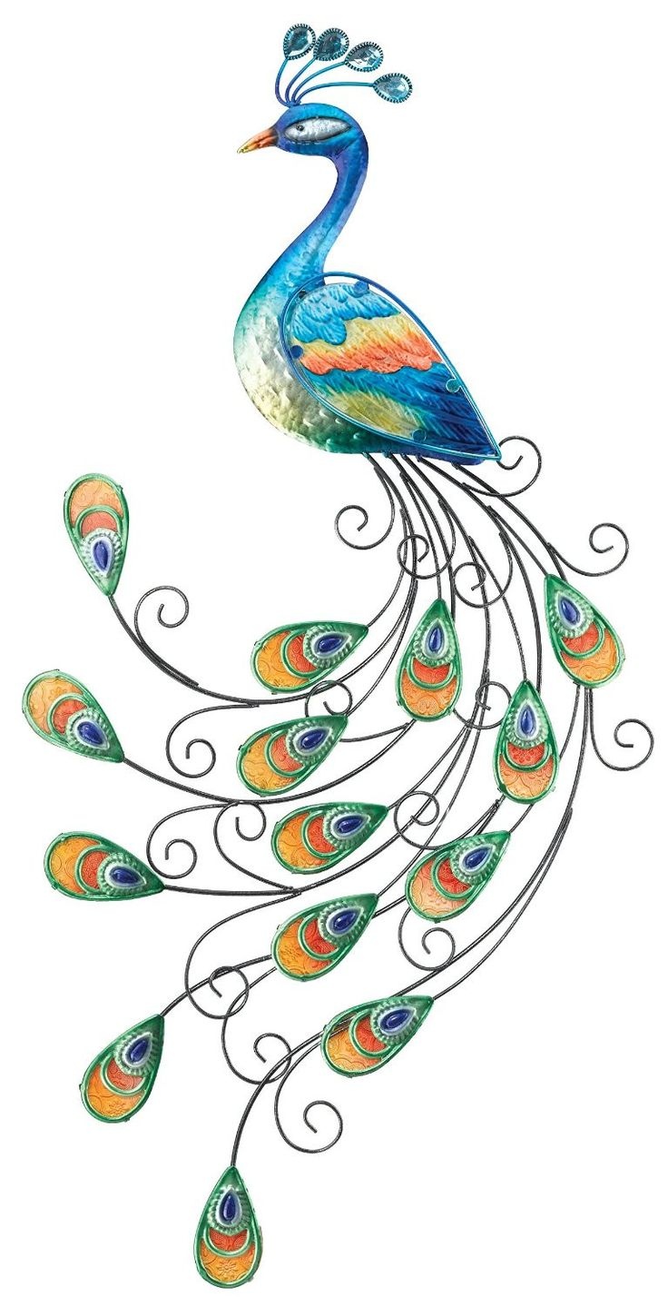 best coisas para usar images on pinterest peacocks peacock