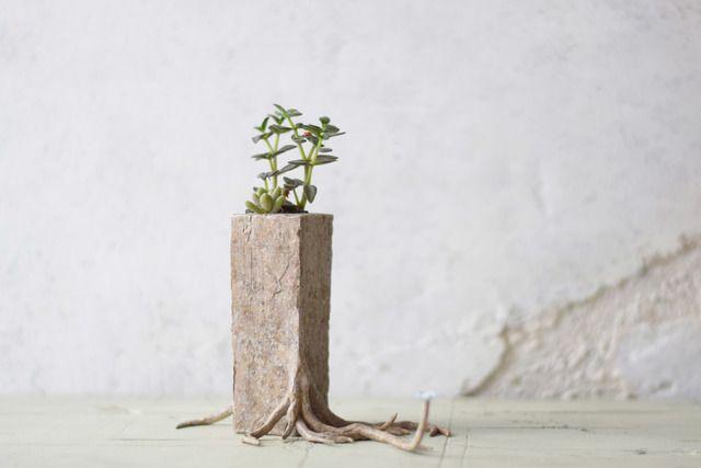 日々育ってゆく植物をうらやましく思い,ついに見よう見真似で自ら成長をはじめたプランター(けど少し間違っている)(tall)