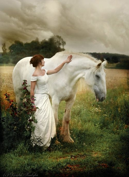 Draft horse, hest, woman, female, field, cloudy sky, white beauty ...