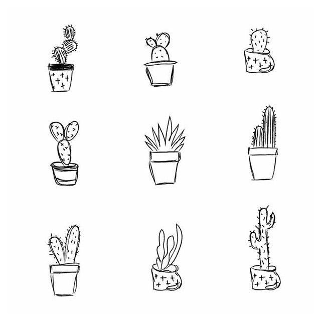 Top 25 Ideas About Cactus Drawing On Pinterest Art Doodle And