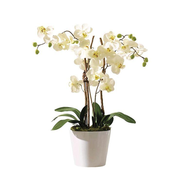 Kunstpflanze Orchideentopf Elegance´´ - Textil/Keramik - Grün/Weiß, Pure Day Jetzt bestellen unter: https://moebel.ladendirekt.de/dekoration/dekopflanzen/kunstpflanzen/?uid=82c50fdf-ac0a-5270-b1ef-54e041da21a9&utm_source=pinterest&utm_medium=pin&utm_campaign=boards #accessoires #dekopflanzen #kunstpflanzen #kunstblumen #pure #day #dekoration #blumentöpfe