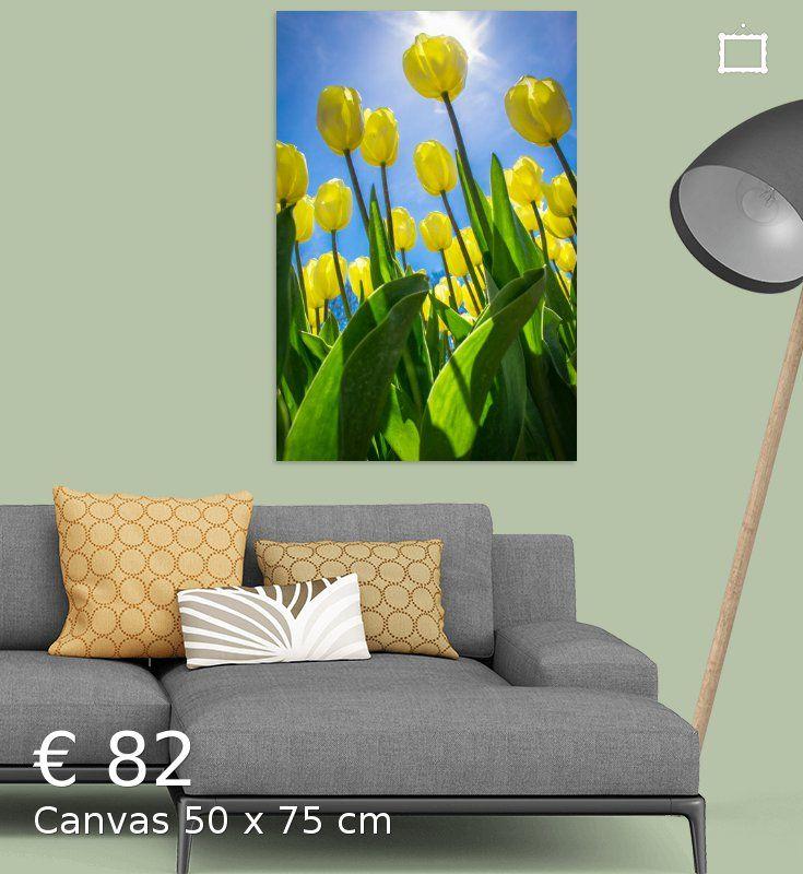 Nieuw in mijn Werk aan de Muur shop: Gele tulpen in de lentezon