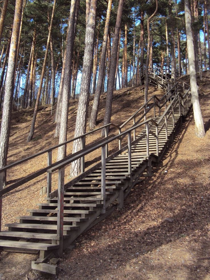 Pyynikin portaat, Tampere @bsuorsa / Stairs in Pyynikki, Tampere, Finland, 2014.