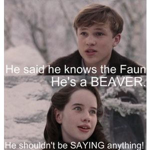 8e0511ea01592e56f3c31d1a3575be10 narnia movies narnia funny 129 best chronicles of narnia memes ) images on pinterest,Narnia Memes
