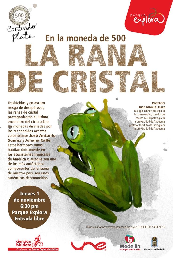 【  LA RANA DE CRISTAL  】  Ciclo Contanto Plata / Parque Explora. Ilustración: María Luisa Isaza.
