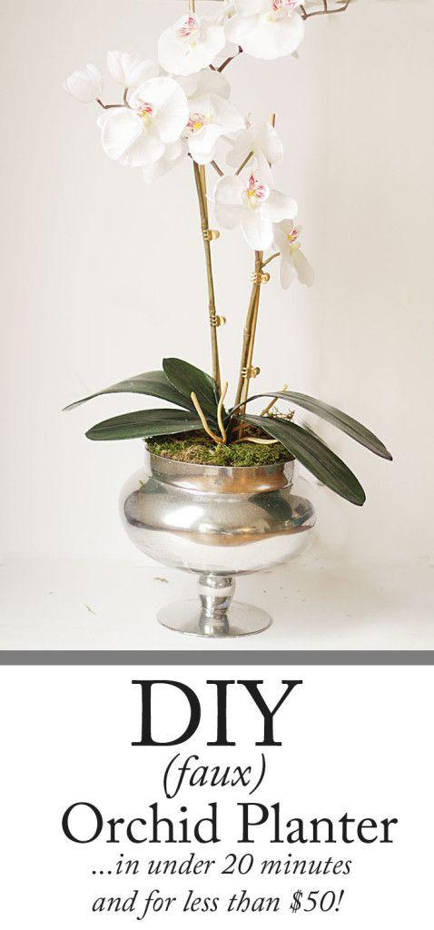 DIY Orchid Planter - Style Your Senses