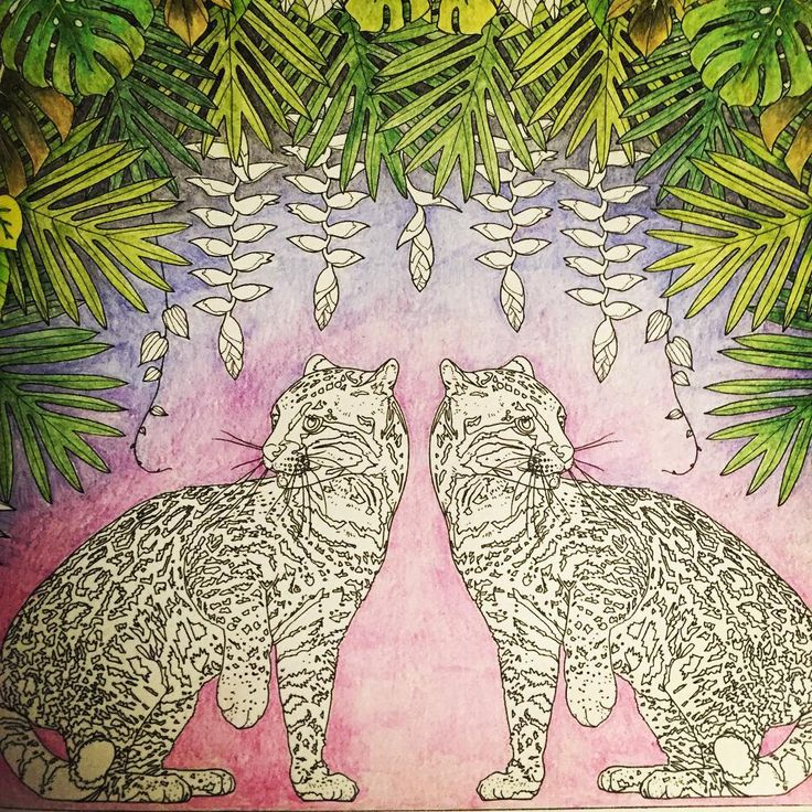 Playing with Derwent INKTENSE pencils in Jade Gedeon's lovely coloring book printed on a creamy and lovely watercolor paper. The illustrations in this book are just gorgeous and represent plants and animals populating the rainforest of Trinidad and Tobago. #rainforestescape #jadegedeon #rainforest #derwentinktensepencils #coloredpenciladdict #coloredpencils #ocelots #adultcoloringbook #watercolor papercoloringbooks