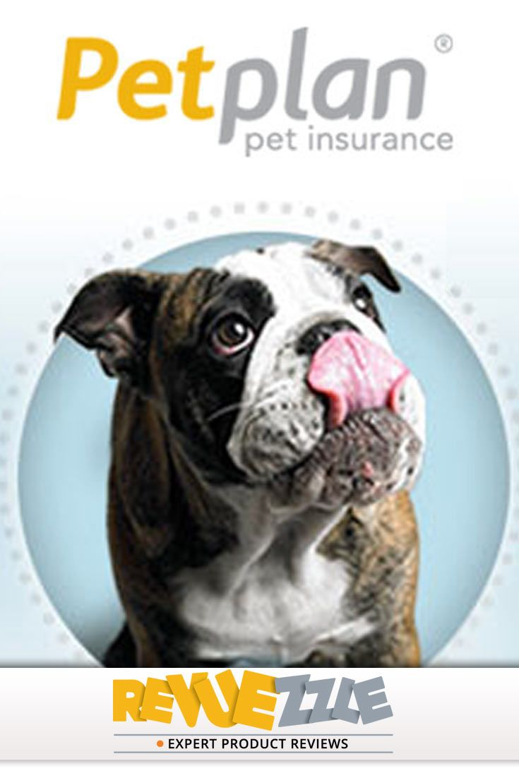 Petplan pet insurance review