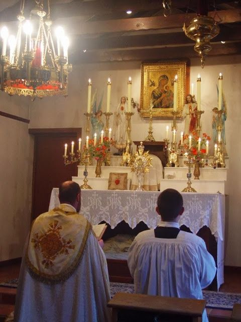 Father Don Pietro Leone has done the best scientific comparison of the New Mass with that of the Latin Mass.  This paper was published on Rorate Caeli blog and he recently published the final chapter.  I would like to ask all who read this blog to take the time to read this paper on the …