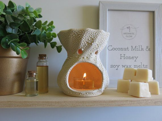 Coconut Milk and Honey Fragrance Wax melts Natural by AromaticGlow