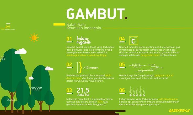 10% luas daratan Indonesia terdiri dari lahan gambut. Dengan kedalaman 8-12 meter, hutan gambut terbentuk kurang lebih 5.000 tahun. Gambut adalah salah satu primadona bangsa Indonesia yang sudah selayaknya dilindungi.