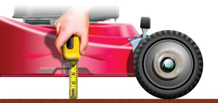 11 #Tips for a Lush #Lawn: Set Your Mower Blade at the Right Height to Control Weeds