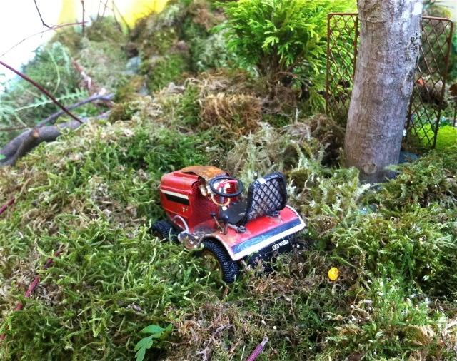 Miniature Fairy Garden Display By Janit Calvo.