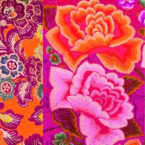 Velvet Cushion 40cm Mexican Rose Anna Chandler Design