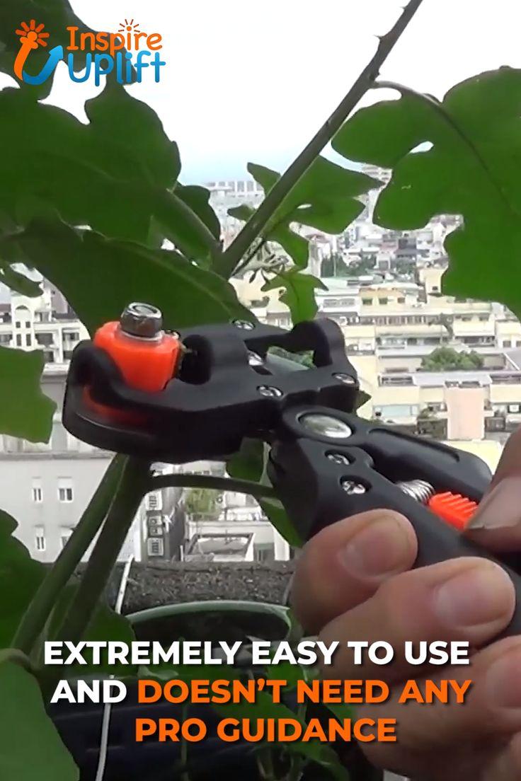 Professional Tree Grafter Kit 😍
