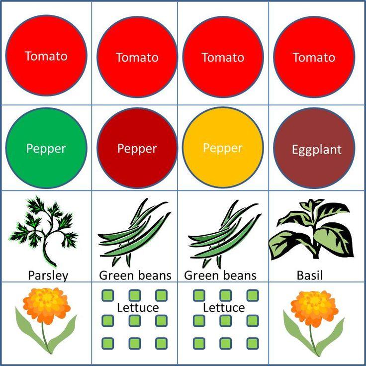 Square Feet Veggie Gardens And 4x4 On Pinterest
