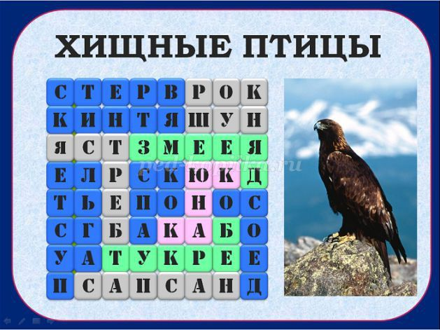 Хищные птицы: стервятник, коршун, ястреб, змееяд, пустельга, сапсан, беркут, скопа, канюк, осоед