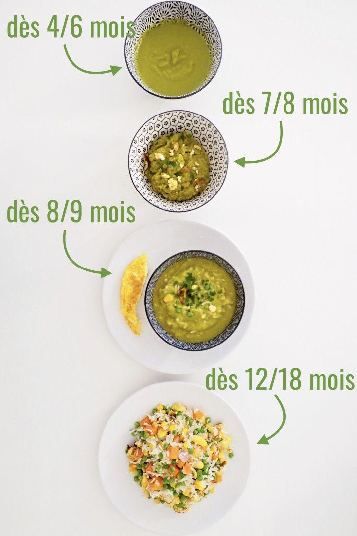 Riz Cantonais Vegetarien Pour Bebe Et Toute La Famille Cuisinez Pour Bebe Recette Recette Riz Cantonais Recette Riz Aliments Pour Bebe Faits Maison