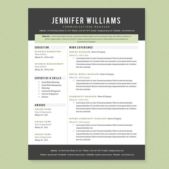 professional resume template pkg