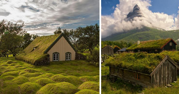 Scandinavians are serious about their green roofs. They've had them for a while now and it doesn't look like they're going anywhere. They even have a competition every year to determine the best green roof project in Scandinavia by the Scandinavian Green Roof Association! But there is a reason why Scandinavians like these green roofs so much... They are not only a beautiful feature for a house, but they also offer numerous social, environmental and financial benefits. They absorb rainwater…