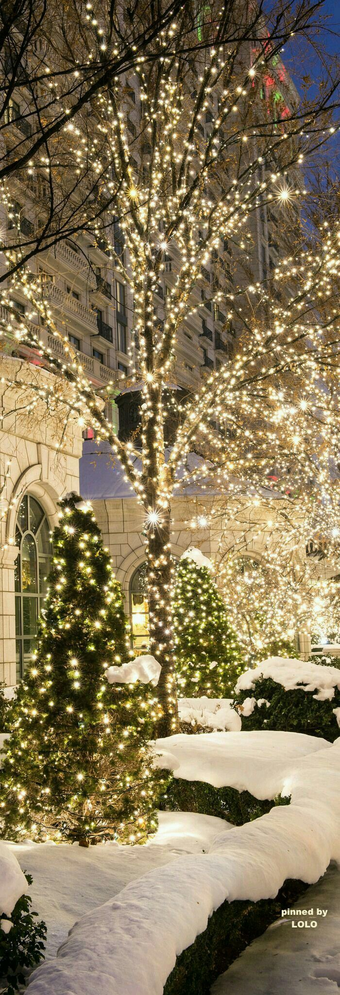 It's Christmas time in the city.