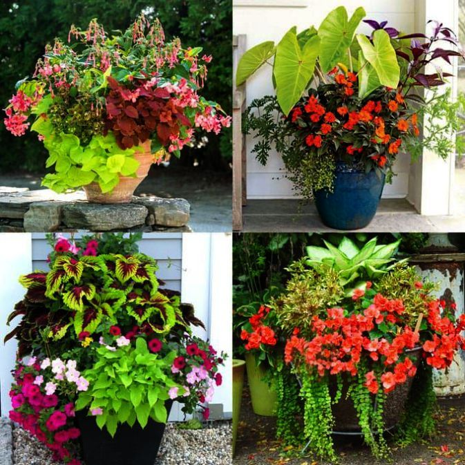 Gardening Courses For Beginners Singapore Of Gardening Tools