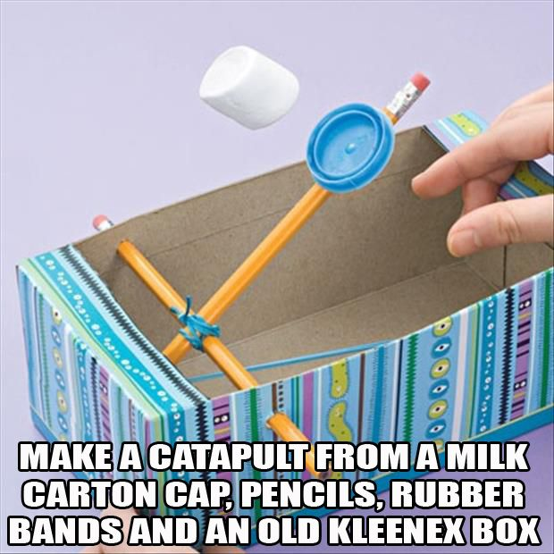 Make a catapult from a milk carton cap, pencils, rubber bands and an old tissue box.