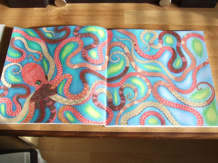 Octopus From Animal Kingdom By Millie Marotta The Octopus